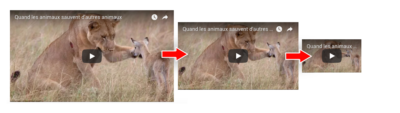 How to make my embed video perfectly responsive – Qualifio Help Center